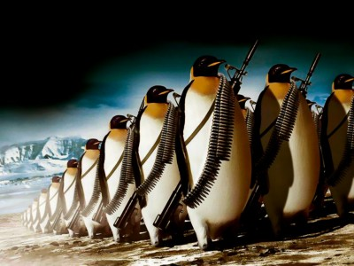 Has your website been hit by Penguin 3.0?